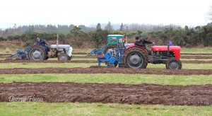 Roundwood Ploughing 2014-The Race is on.