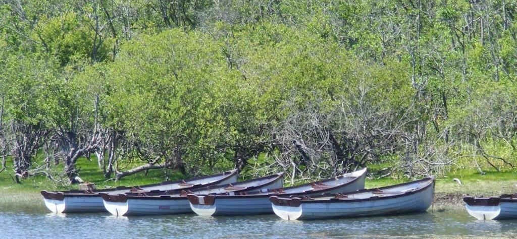 cropped-boats-on-lake.jpg