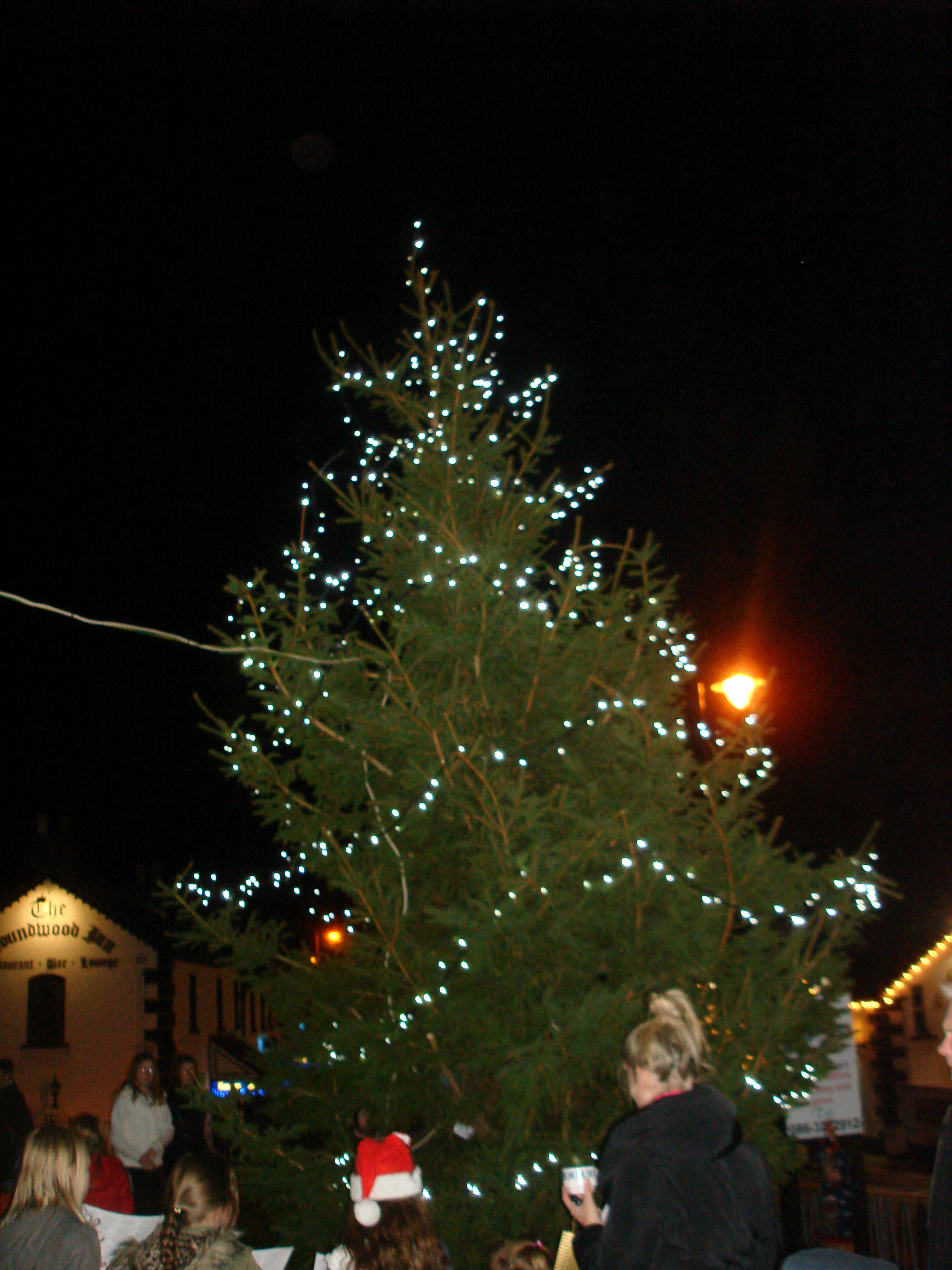 Christmas Tree Light Up | Roundwood